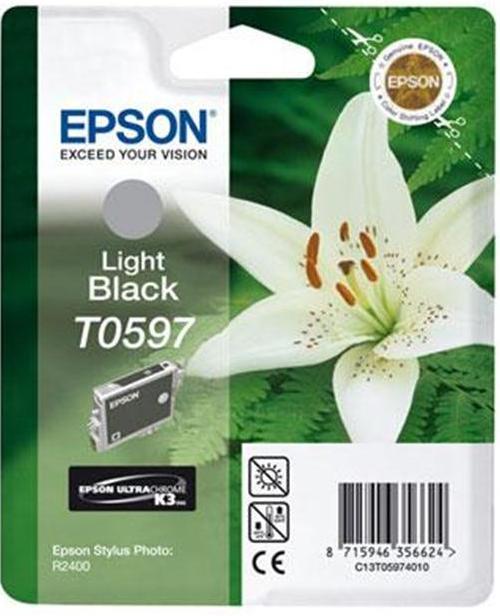 Купить Картридж Epson StPhoto R2400 сірий, C13T05974010